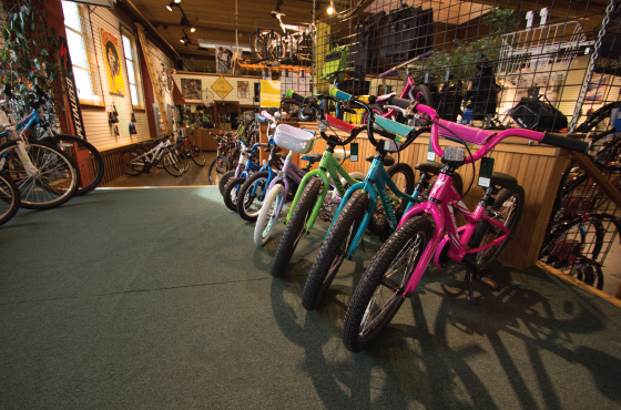 Here Are Just A Few Of The Types Of Bikes We Carry